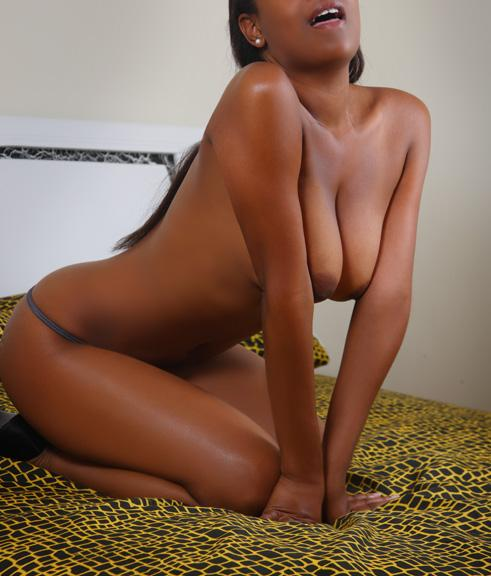 diego indian escorts